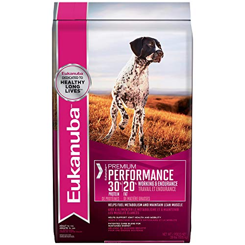 , Eukanuba Premium Performance 3020 Adult Dry Dog Food 29 CatFood