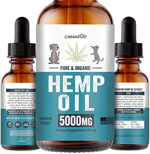 , Hemp Oil for Dogs Cats Separation Anxiety Pain