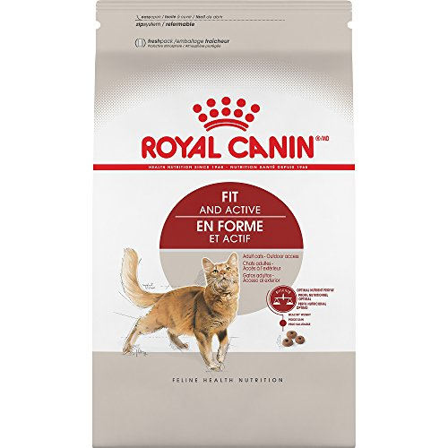 , Royal Canin Adult Fit Active Dry Adult Cat Food