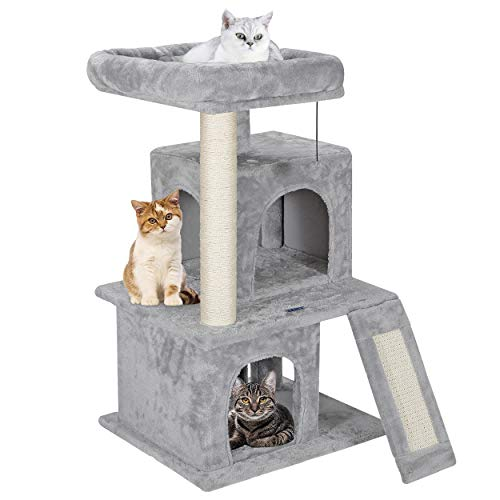 Best Cat Tree for your Cat or Kitten