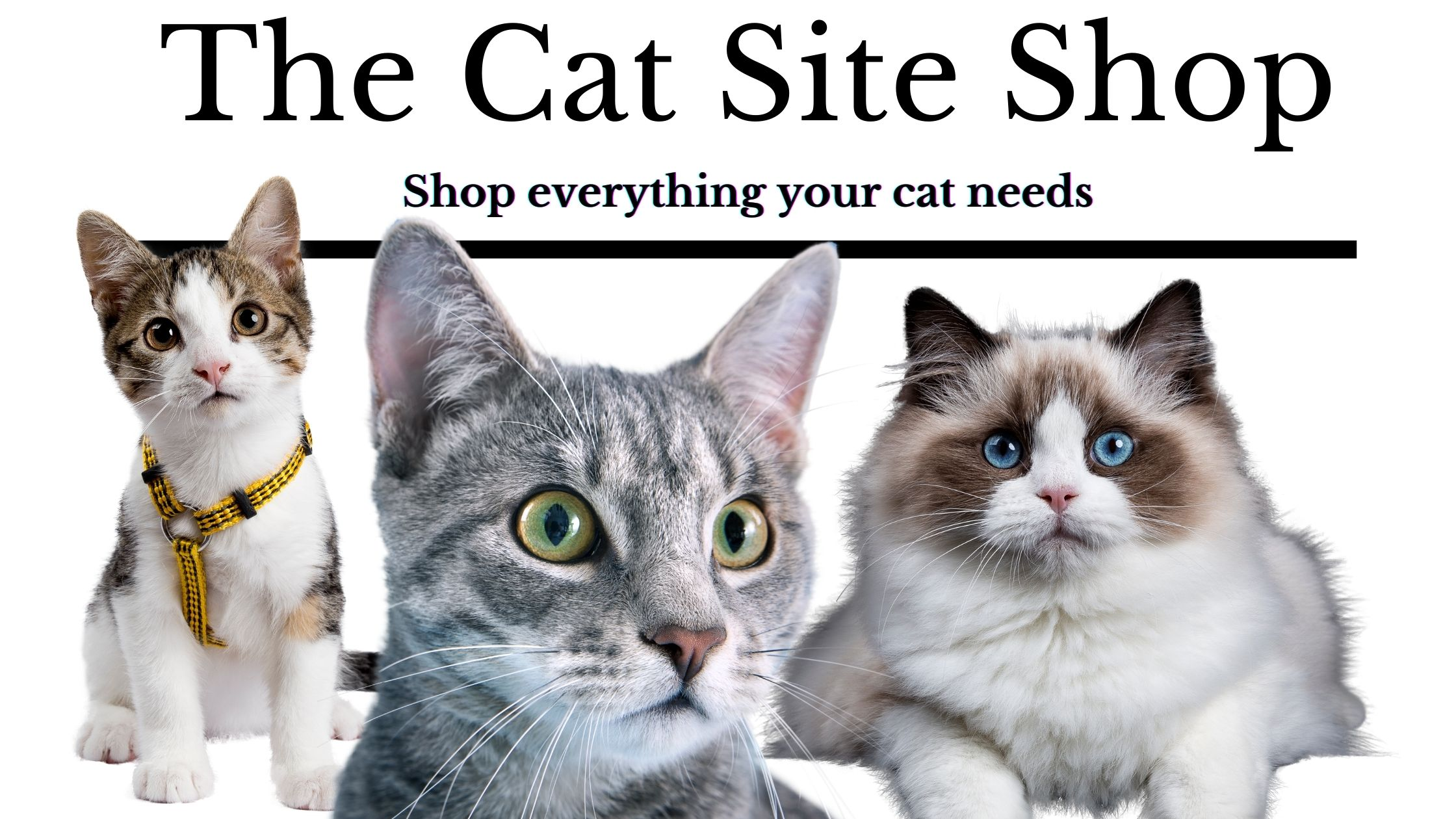 The cat site shop