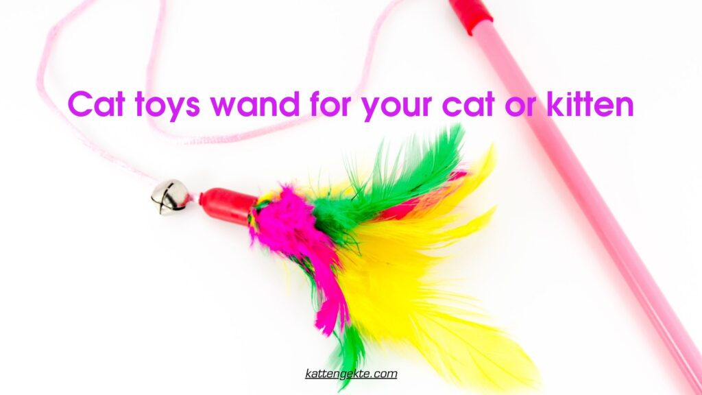 Cat toys wand for your cat or kitten