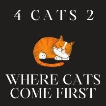 4 cats 2 - where cats come first